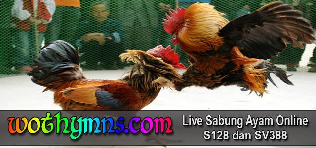 Daftar S128 Sabung Ayam Online Resmi Indonesia